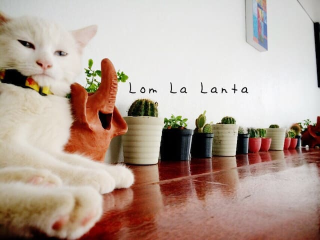 Lom La Lanta ~ lll - Ko Lanta Yai - Bed & Breakfast