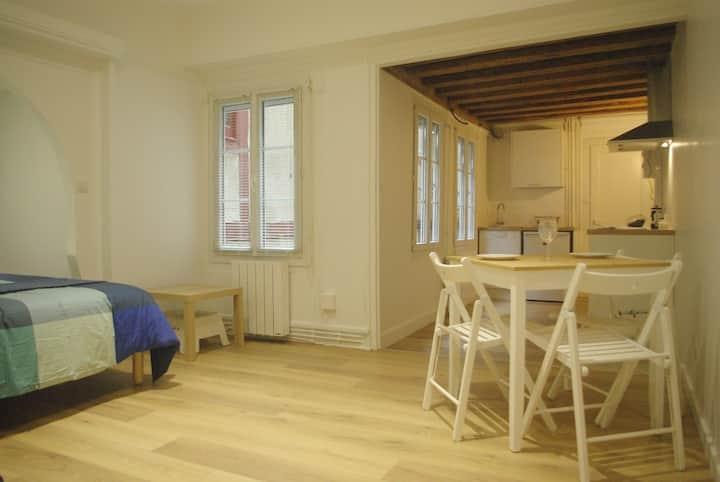 Appartement Plein Centre Historique Dijon