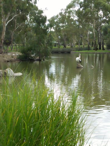 Lovely quiet location - Oakden - House
