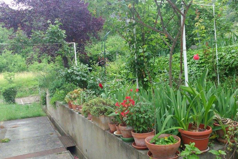 Jardin dans lequel vous pourrez prendre vos repas