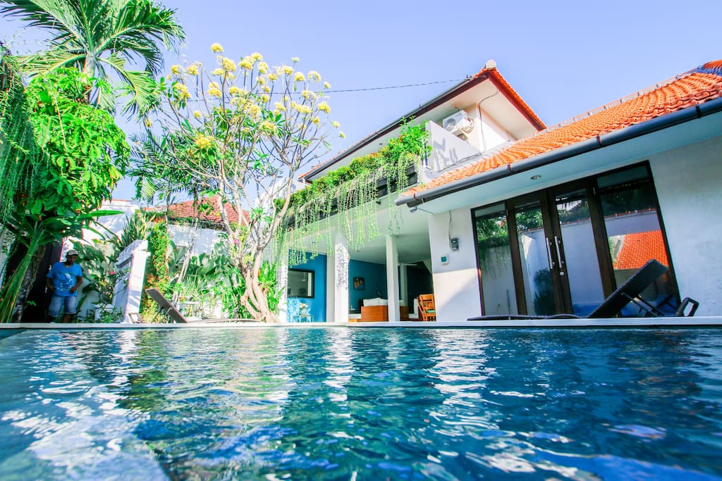 Swimming pool surrounded by tropical trees and plants. Jump to the swimming pool from your bed :)