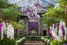 Visit stunning Longwood Gardens - fabulous year round located about 15 minutes away.