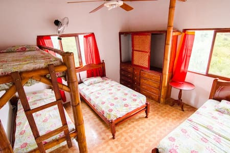 Single bed in a gorgeous dormitory. - Bed & Breakfast