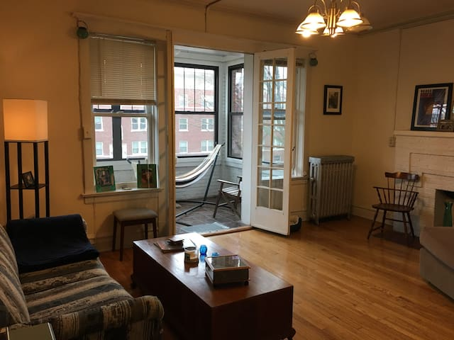 Vintage 1BR in Historic Oak Park - Oak Park - Apartment