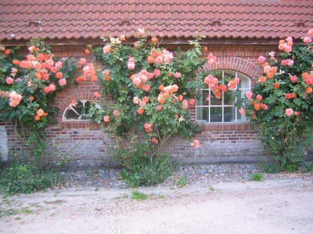 Gemütliches Rosenhaus auf Gut Hohenstein - Barkelsby - Hospedaria