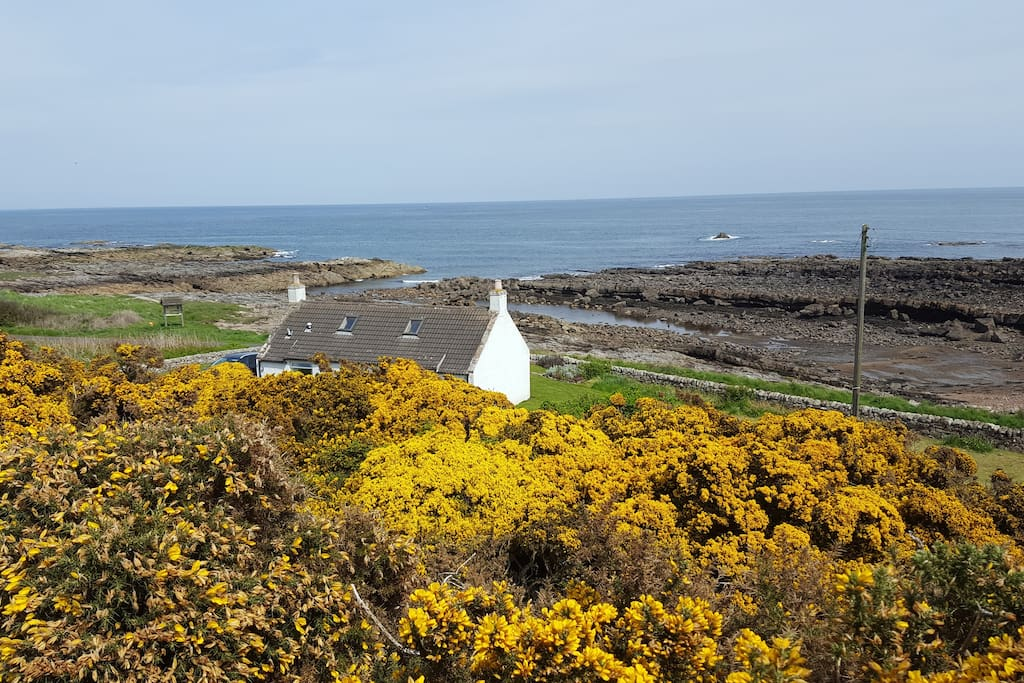 Overlooking cottage from Fife Ness Muir