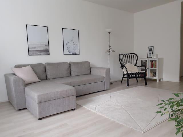Tilava kaksio / Spacious two-room apartment