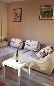 Apartment Studio Dex Novi Beograd