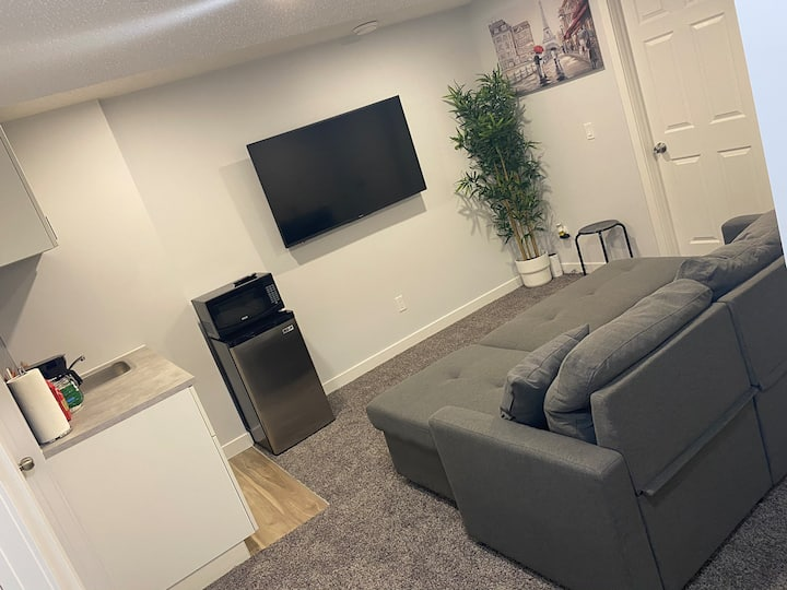 New 1-Bdrm and a Den Basement suite Calgary