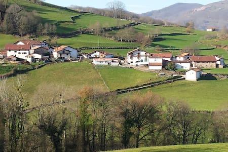 Casa rural Barazabal - Baztan - Gorostapolo