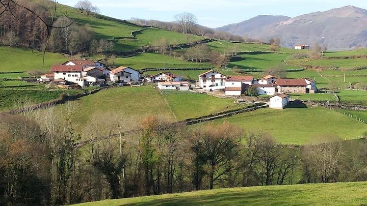 Casa rural Barazabal - Baztan