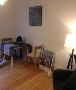 Cozy apartment in great Vesterbro - 哥本哈根 - 公寓