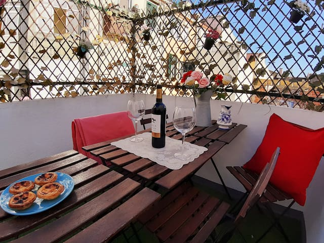 SPACIOUS, city Center appartment -2private PATIOS