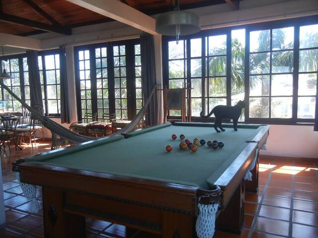 The Cats' House (3 people) - Florianópolis - Guesthouse