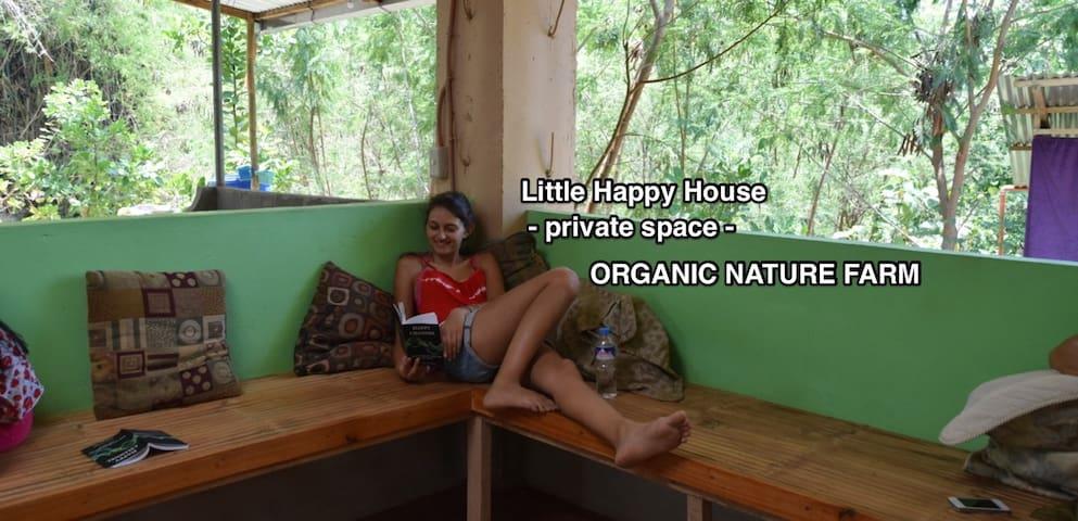 Organic Farmstay: Little Happy House Guest Room