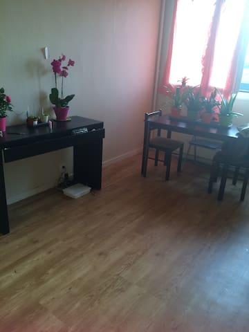 Un canapé à Orléans - Orléans - Appartement
