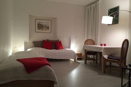 Ruhig, zentral und in Top-Lage - Darmstadt - Apartment