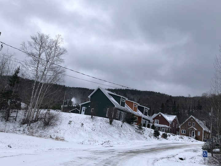 Condo Anse StJean MontEdouard  ski in/out Désinfec