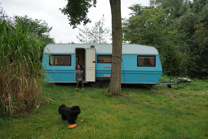 Mini cosy private caravan park