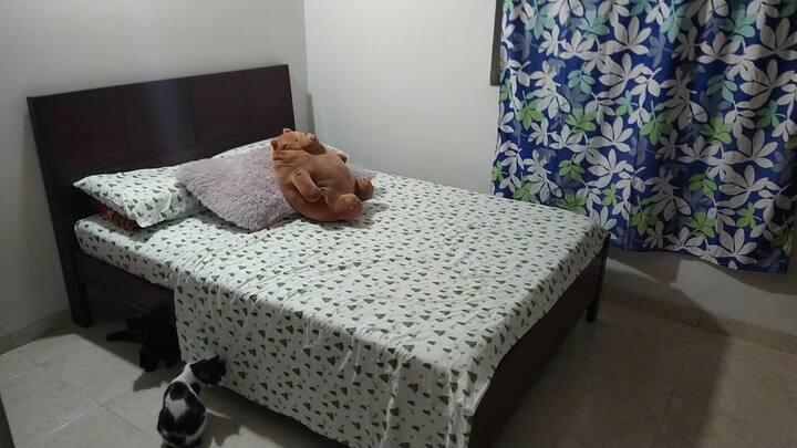 Habitación agradable y tranquila
