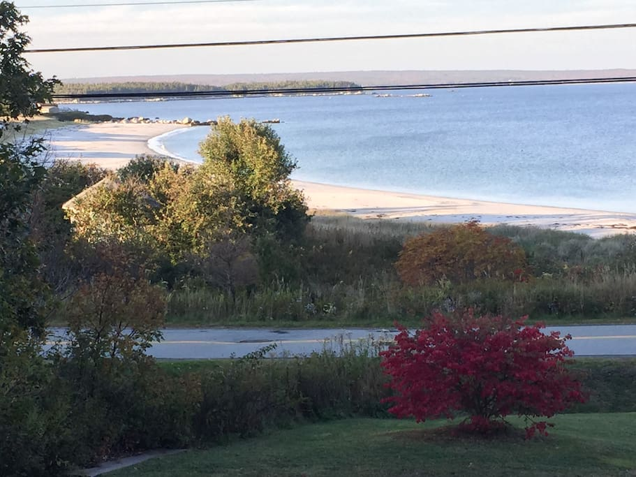 view from the front yard - great beach with access across the road