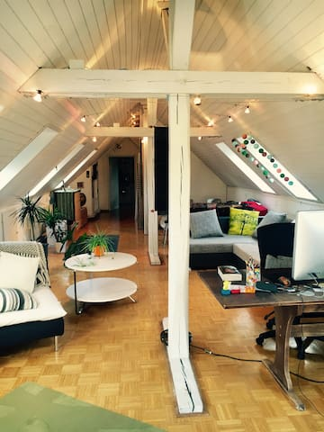 Cosy rooftop chalet apartment - Zürich - Appartement