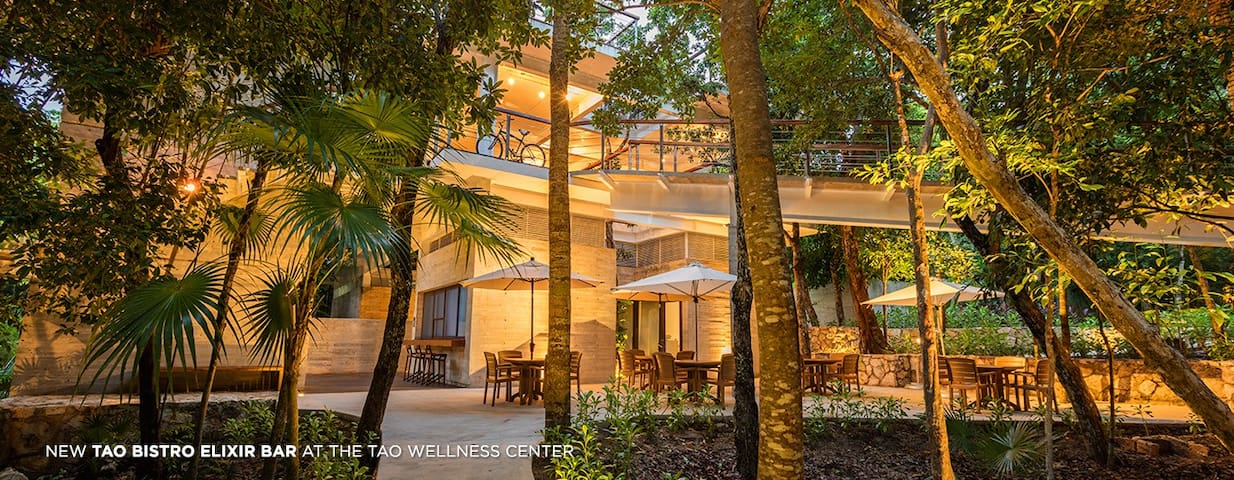 Luxurious Calming Retreat Villa - Akumal - Hus