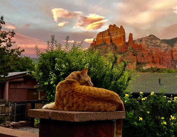 "Sedona Daydreaming - Near Airport Vortex & ""The Y"""