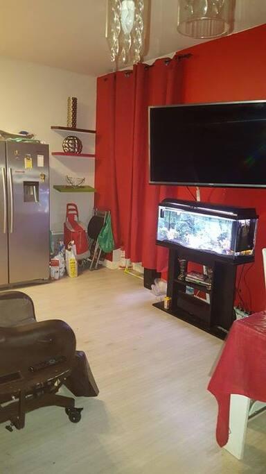 Téléviseur accroché au mur au-dessus de l'aquarium qui dispose d'un lecteur dvd.