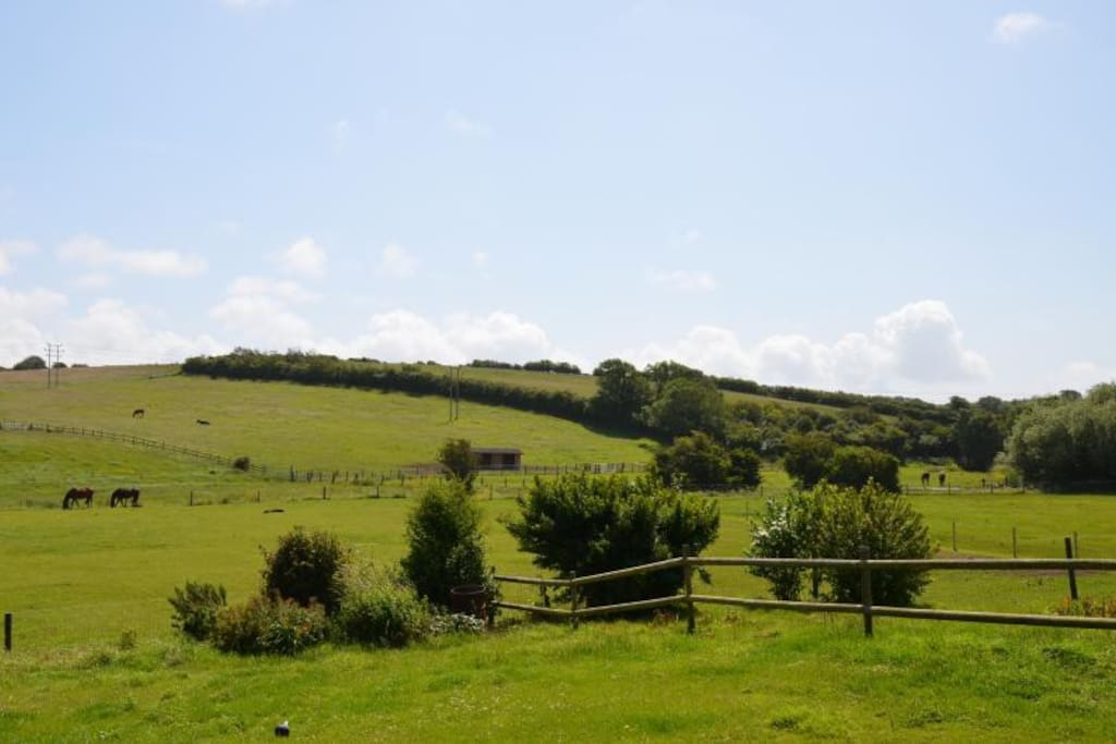 Pelham Cottage is set in the beautiful Dorset countryside