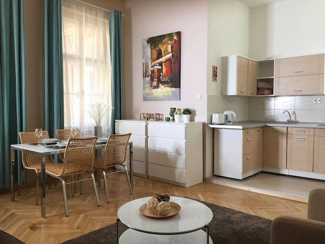 City center cozy apartment with AC
