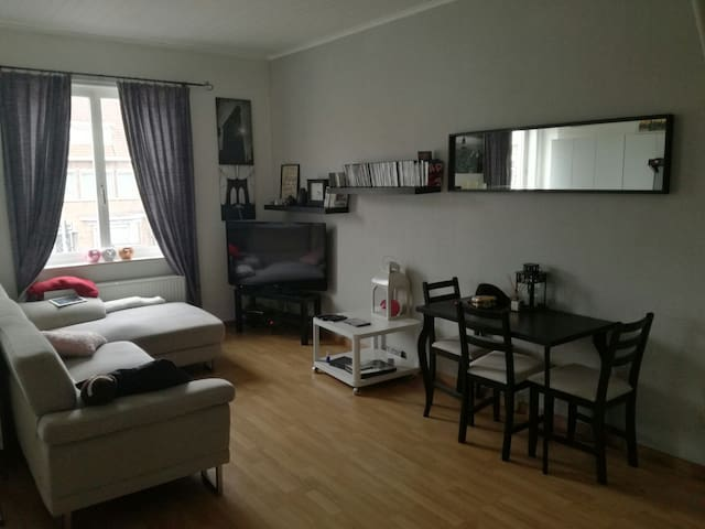 Private room close to city center - Brugge - Huis