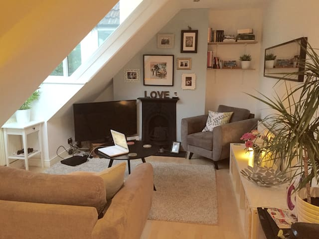 Cosy 1 bed apartment by Whiteladies Road, Bristol - Bristol
