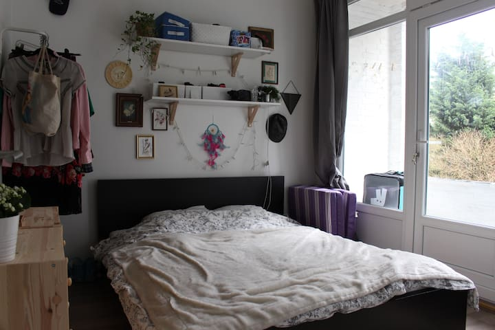 Rotterdam room with private balcony and cat!