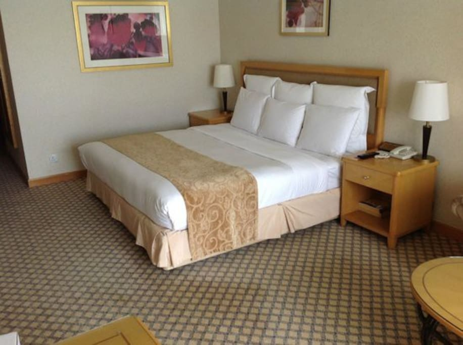 Ultra furnished rooms on ground floor.