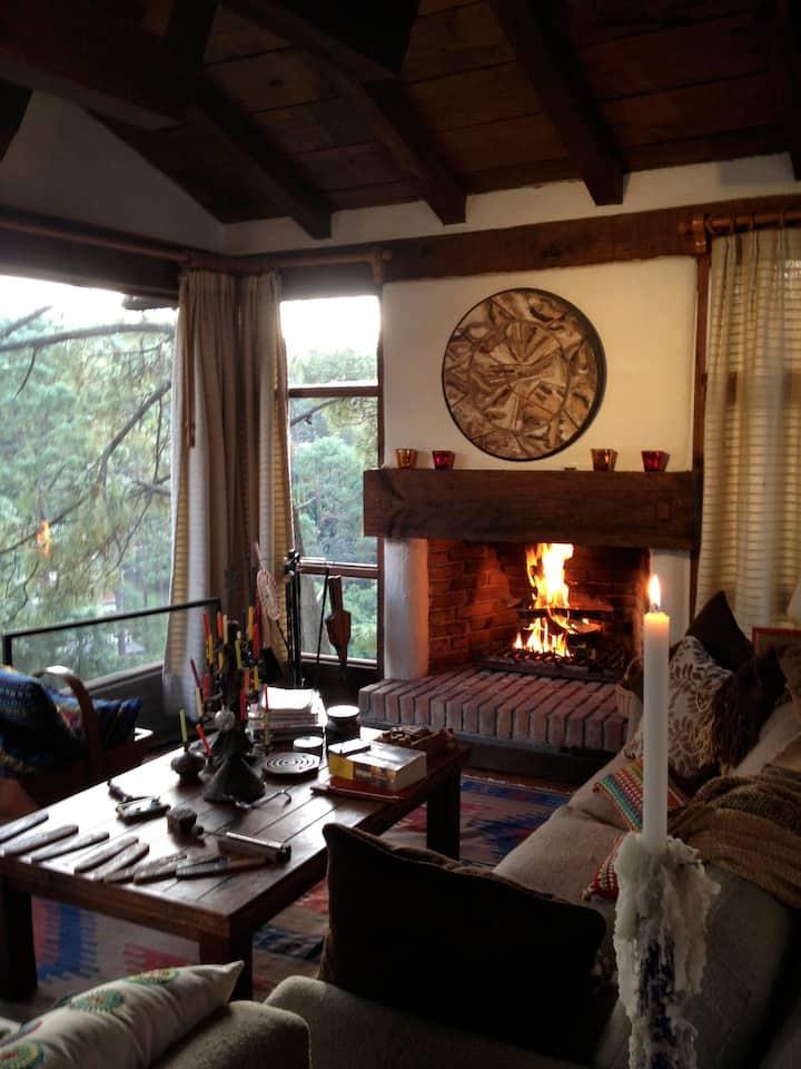 Acogedora y tranquila casa con vista boscosa