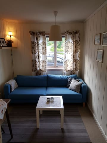 Cozy apartment at Sverresborg, Trondheim