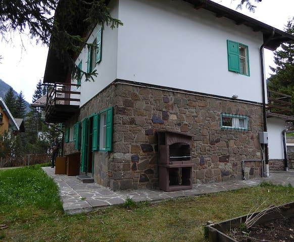Villa Pezzini - Campitello di Fassa - Villa