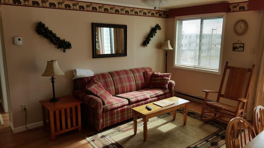 2 BR Unit 323 Snowshoe Mountain Lodge