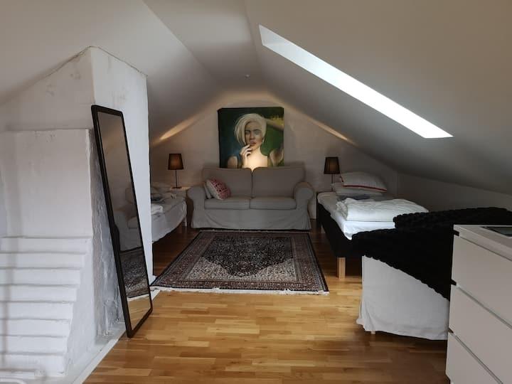 Big room in the center of Helsingborg
