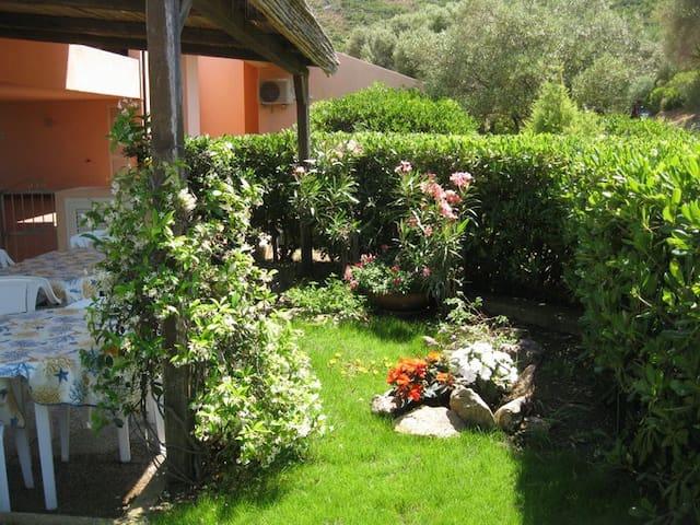 House with garden- Palau - Pulcheddu - 단독주택