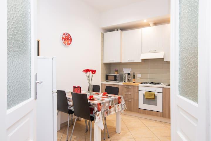 Renovated,cosy, big apartment close to city centre