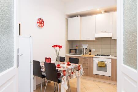 Renovated,cosy, big apartment close to city center