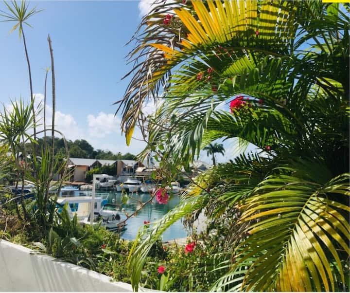 T2 bis 60m2 vue sur marina climatisé + terrasse