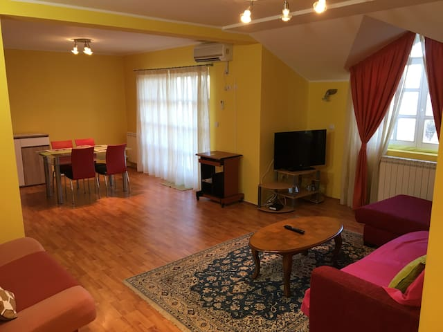 Spacious Apartment/Parking in Uptown Area Belgrade