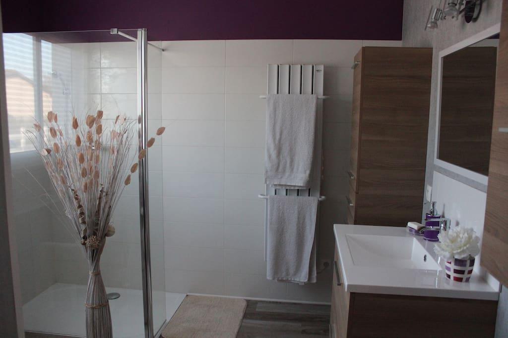 Salle d eau entièrement rénovée avec douche  italienne