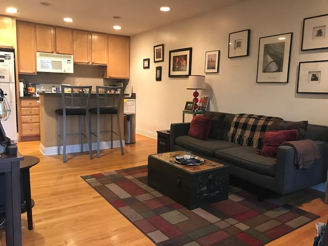 Cozy 1 Bd in the Heart of Andersonville