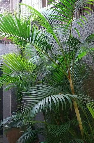 天主堂旁边  别致舒适的复式+小院 - Guangzhou - Huis