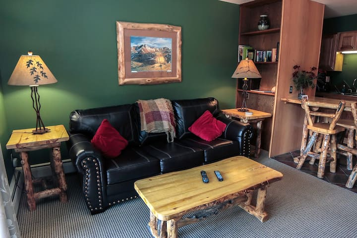 Deluxe one bedroom condo with full kitchen, gas fireplace, river view