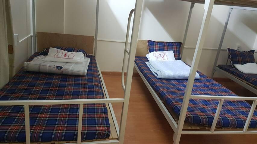 Mô hình giường tầng, gắn kết nhóm bạn đi học, đi du lịch và làm việc cùng nhau